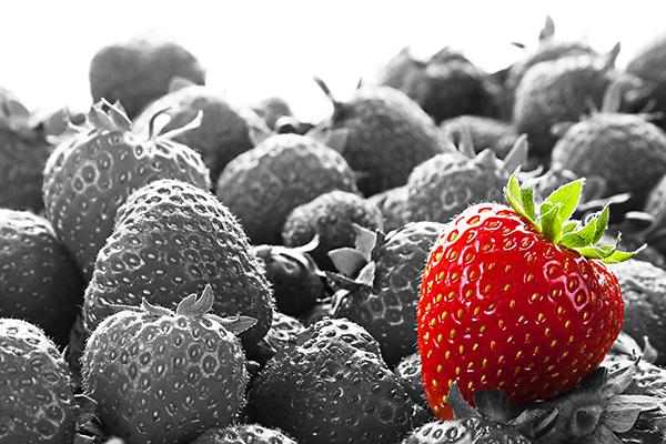 Strawberry standout branding